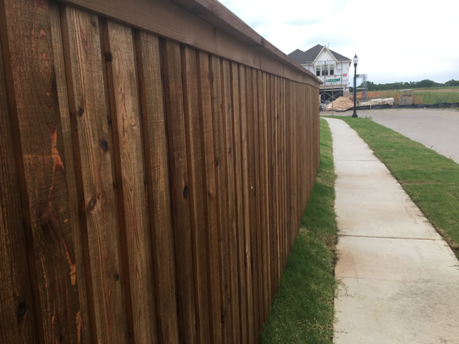 Plano Fence Staining Company